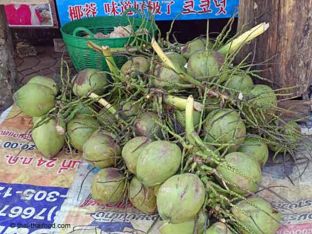 geerntete Kokosnüsse