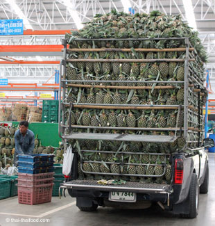 Pickup Truck mit Ananasfrüchten