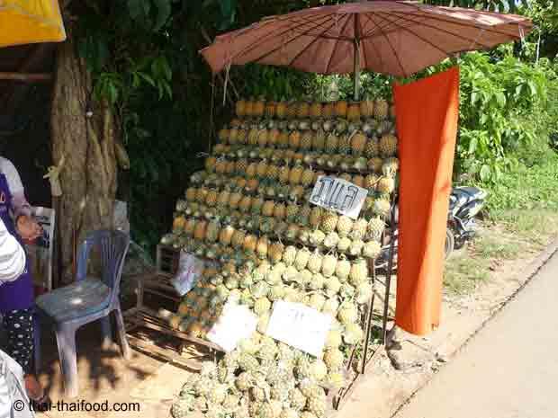 Baby Ananas Verkaufsstand Nord Thailand