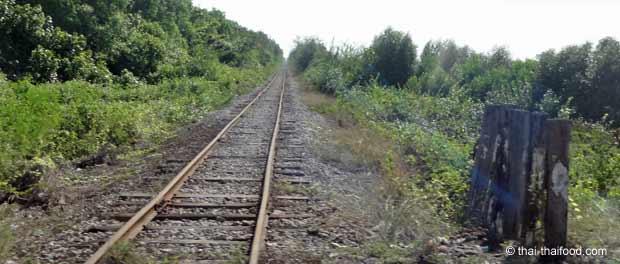 Eisenbahnlinie durch die thailändische Landschaft