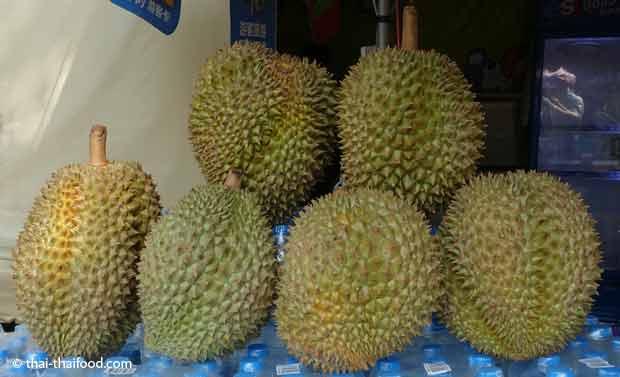 Der Geschmack einer Durian