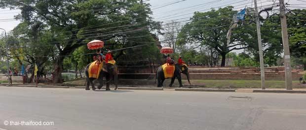 Elefanten auf den Straßen von Thailand