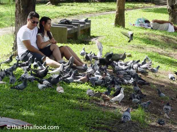 Entschleunigen und Entspannen im Lumpini Park