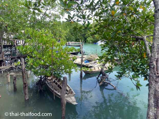 Fischerboote in den Mangoven
