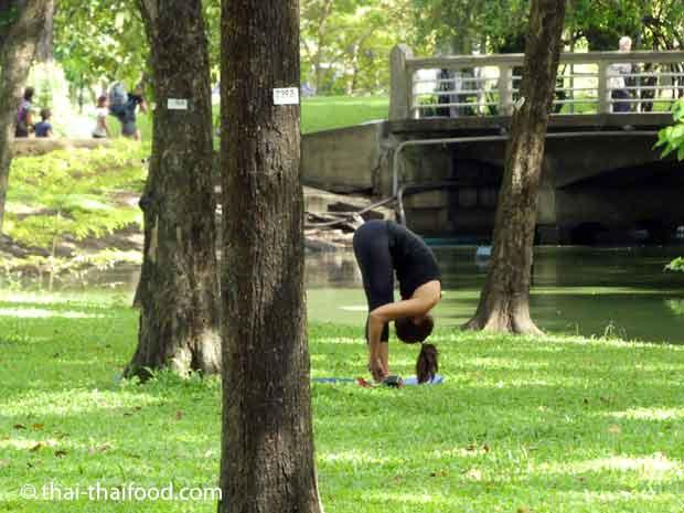 Fitness in freier Natur