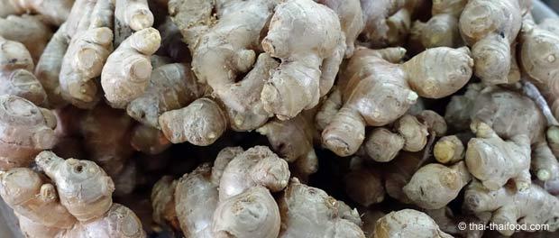 Ingwer kaufen auf einem thailändischen Markt