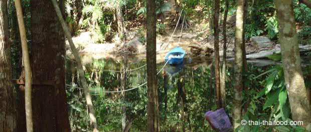 Fluss mit Boot im Dschungel von Koh Chang