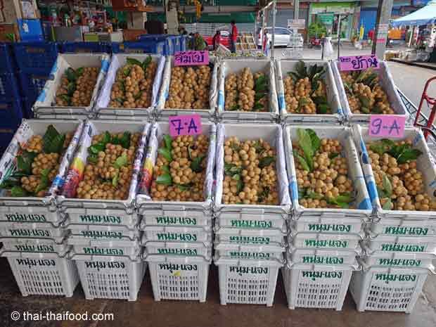 Longkong Verkauf auf dem Talat Thai Markt
