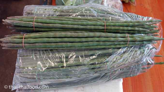 Asiatisches Gemüse Moringabaum Frucht