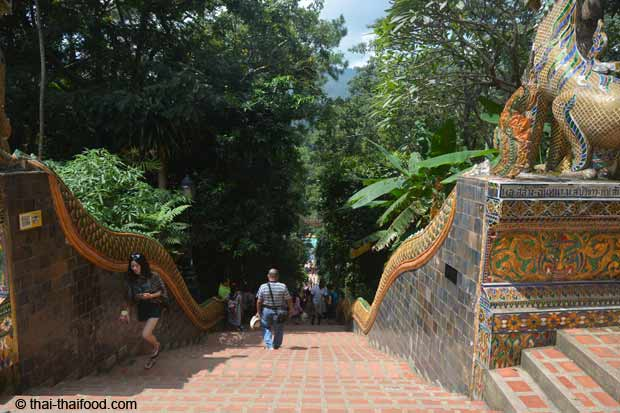 Naga Treppe zum WatPhra That Doi Suthep
