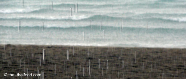 Kurzer starker Regenschauer am Strand von Koh Chang