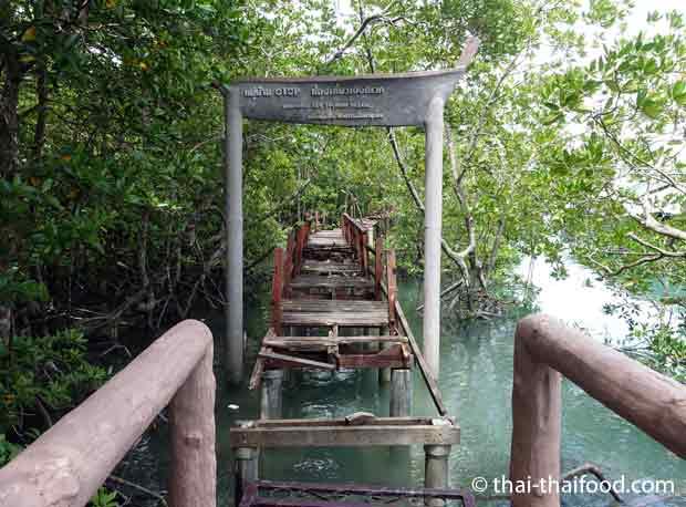 Verfallender Steg zum ehemaligen Eco Touristen Dorf