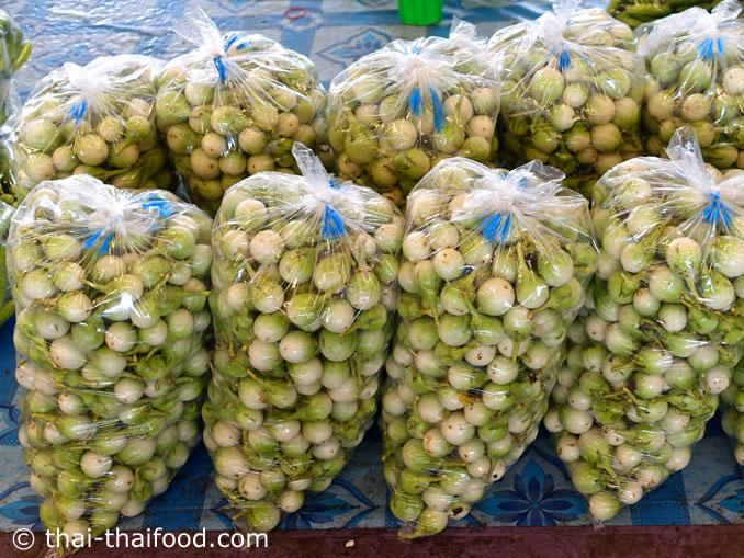 Thai Auberginen kaufen
