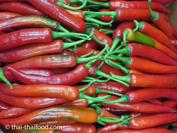 Rote Thai Chili Prik Chi Fa