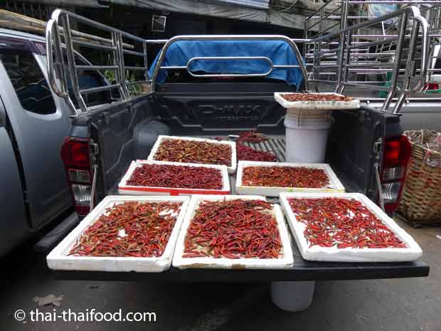 Überall kann man Thai Chili trocknen
