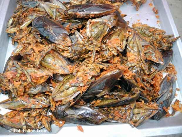 Geröstete Käfer essen in Thailand