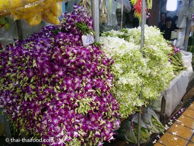 Thailändische Orchideen im Blumenmarkt Bangkok kaufen