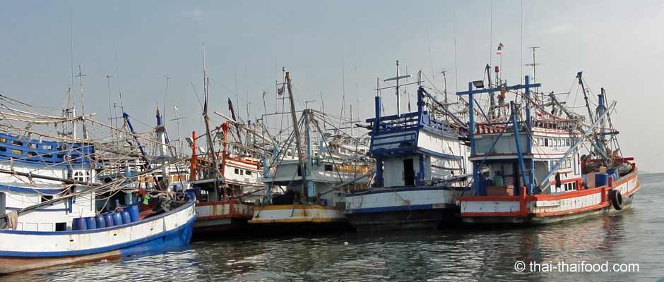 Fischerboote im Fischerhafen Ban Phe
