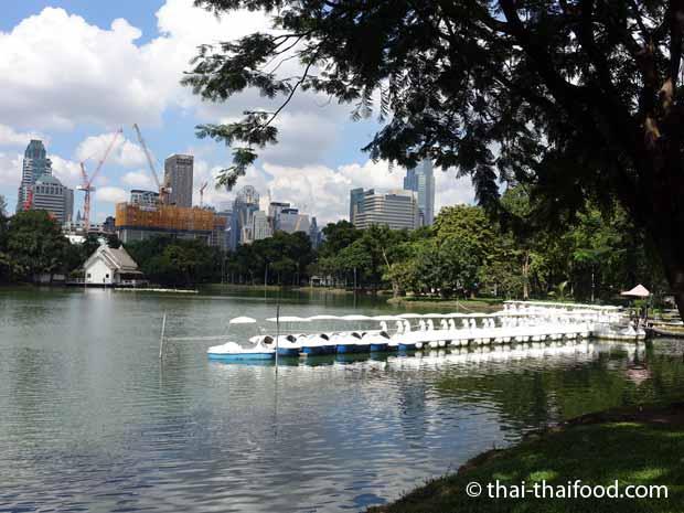Tretboote mieten im Lumpini Park Bangkok