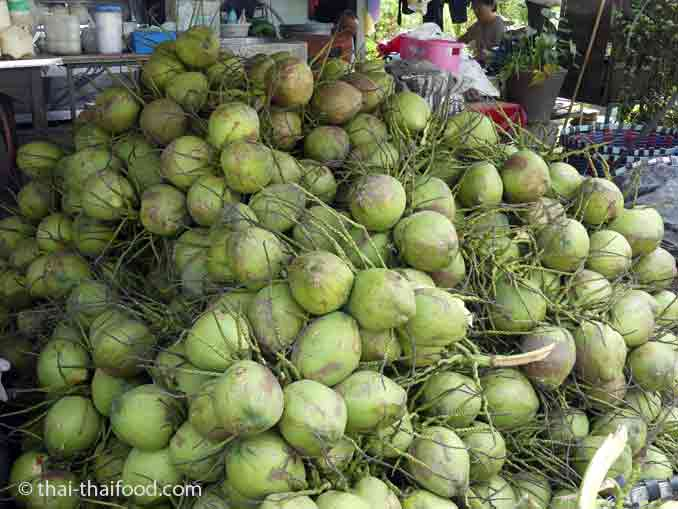 Unreife Kokosnüsse