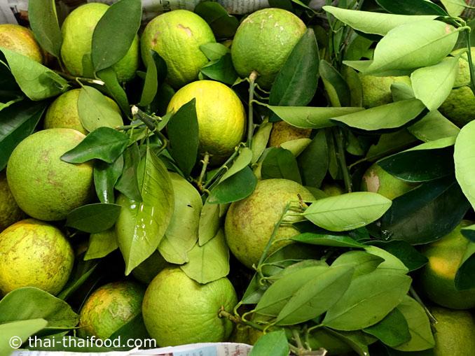 Thai Orangen ส้มเช้ง