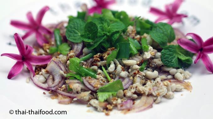 Thailändischer Ameiseneier Salat