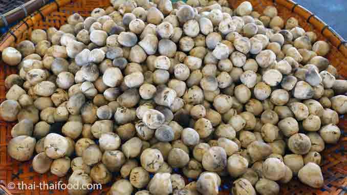 Strohpilze Thai Markt