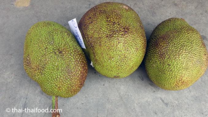 Jackfrucht kaufen