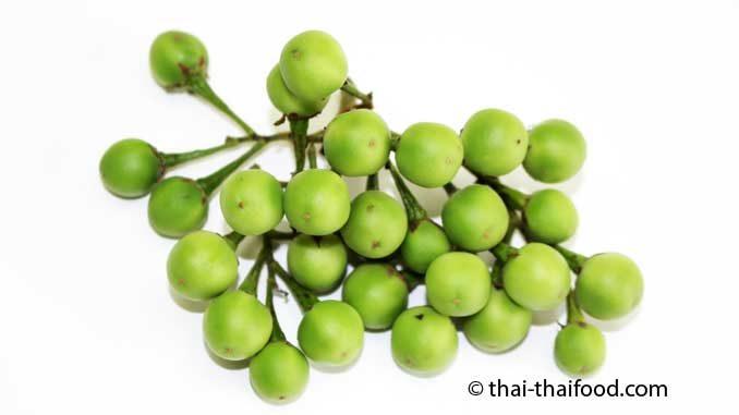 Thai Pea Eggplant