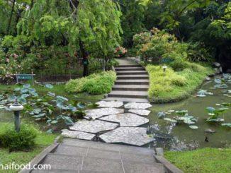 botanischer Garten Bangkok