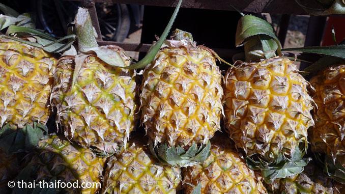 Baby Ananas aus Nord Thailand