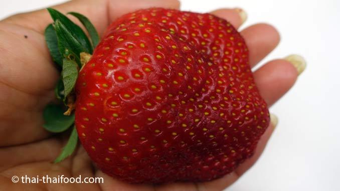 Thailändische Erdbeeren