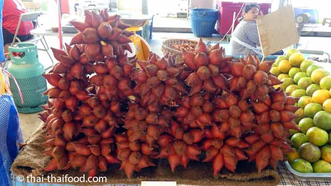 Salak Früchte auf einem Thai Markt