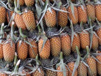 Ananas Thailand