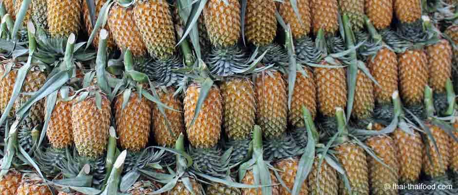 Ananas aus Thailand