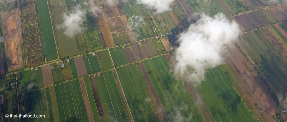 Flächenmaß Rai / Thai Flächenmaße