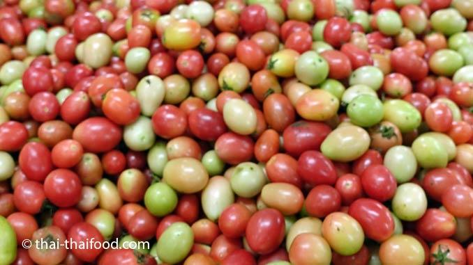 Tomaten in Thailand