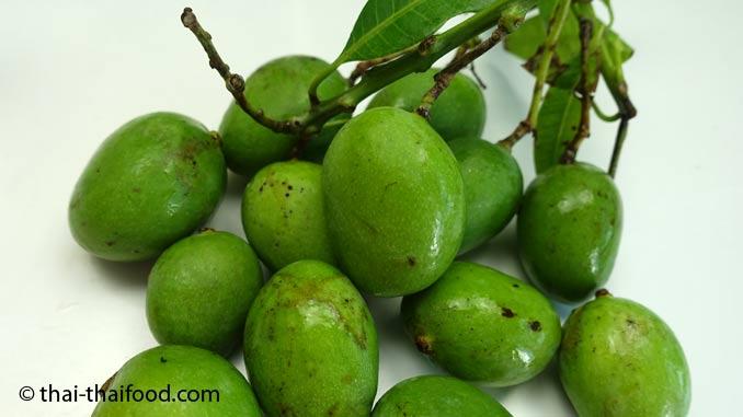 Thailändische Früchte Wilde Mango